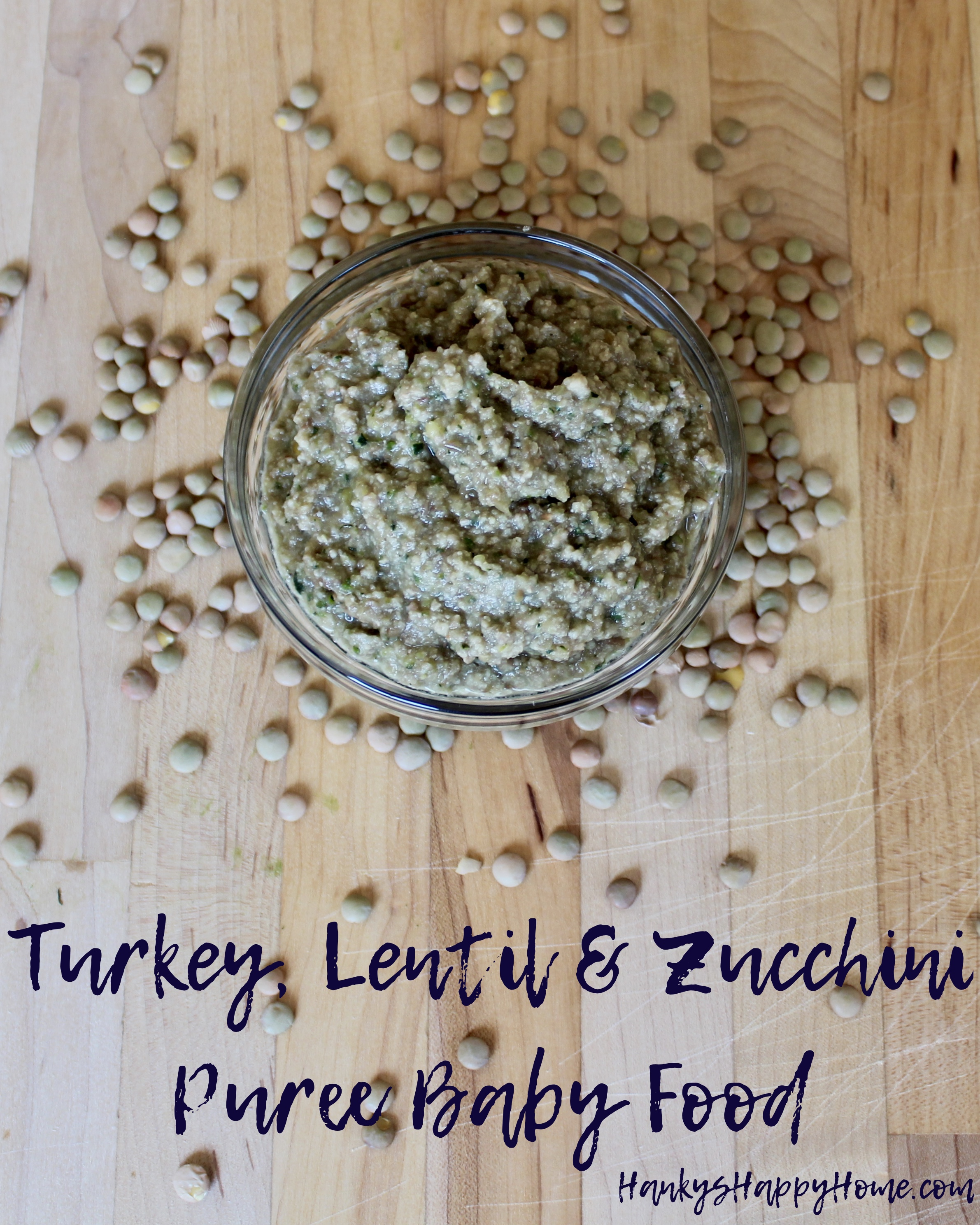 Turkey lentil zucchini puree baby food hankys happy home turkey lentil zucchini puree baby food hankys happy home forumfinder Images