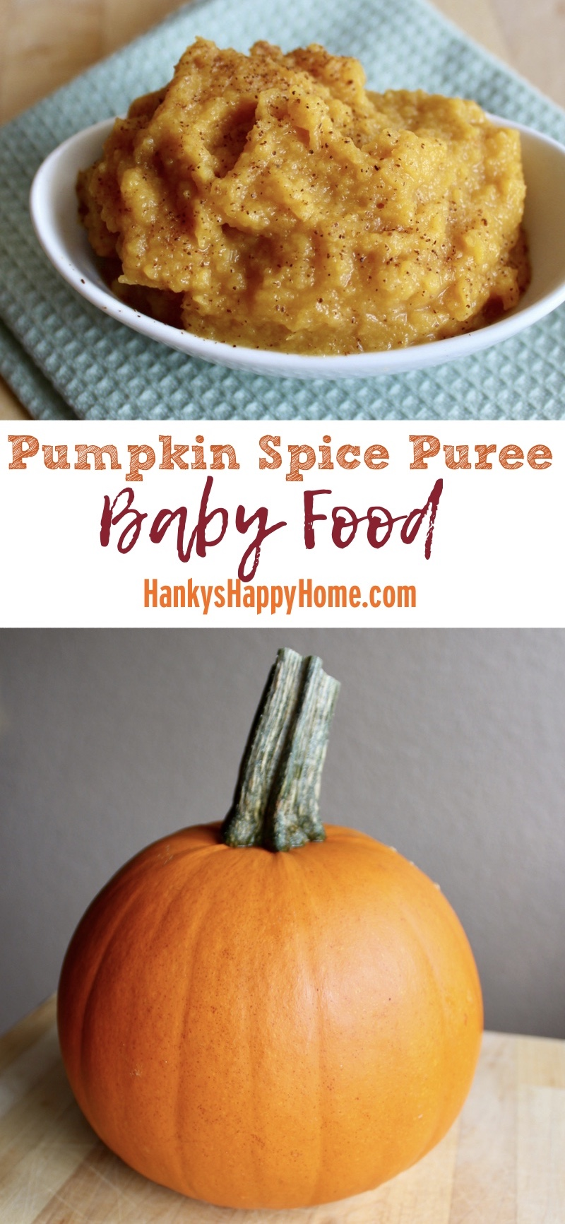 Baby Food Recipes With Pumpkin Puree