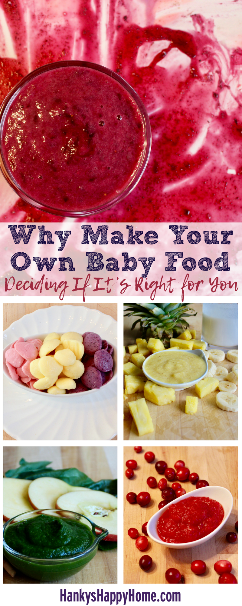 Why Make Your Own Baby Food Hankys Happy Home
